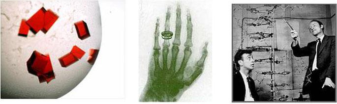 왼쪽부터 단백질 결정 사진, 뢴트겐이 촬영한 최초의 엑스레이 사진, DNA 이중나선 구조를 발견한 왓슨과 크릭의 모습