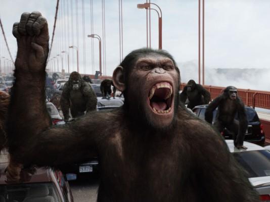 '혹성탈출' 속 침팬지, 실제로 있다고?