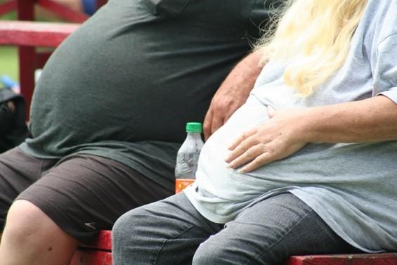 뚱뚱한 사람이 초미세먼지 피해도 더 많이 입는다