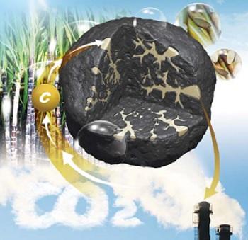 저품질 석탄, 사탕수수 만나 고급 석탄 된다