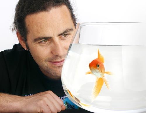 호주 맥쿼리대 컬럼 브라운 교수는 최근 학술지 '동물 인지'에 발표한 논문에서 물고기의 인지능력에 대한 최근 연구결과를 소개하면서 물고기의 복지에 대한 대중의 관심을 촉구했다. - 맥쿼리대 제공