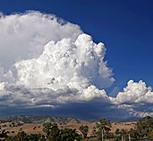 구름에서 물 모아 식수로
