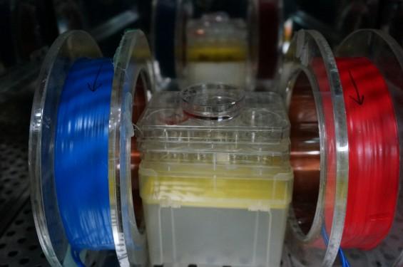 헉! 전자기파 쪼이니 체세포가 줄기세포 되네