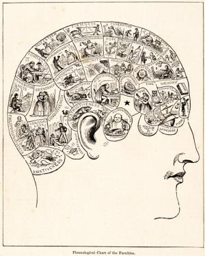 장님 코끼리 만지기 : 뇌와 의식을 이해하려는 노력들