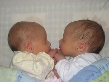 생후 2주 된 쌍둥이 형제.  - 위키피디아 제공