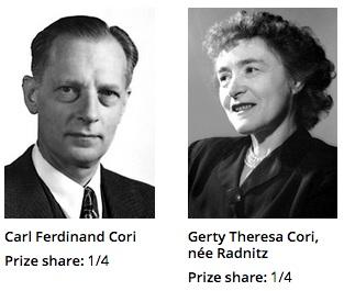 1947년 노벨 생리의학상을 공동수상한 코리 부부. 1896년 생 동갑으로 모국인 체코에서부터 함께 연구를 해 미국에 건너와 꽃을 피웠다. - 노벨재단 제공