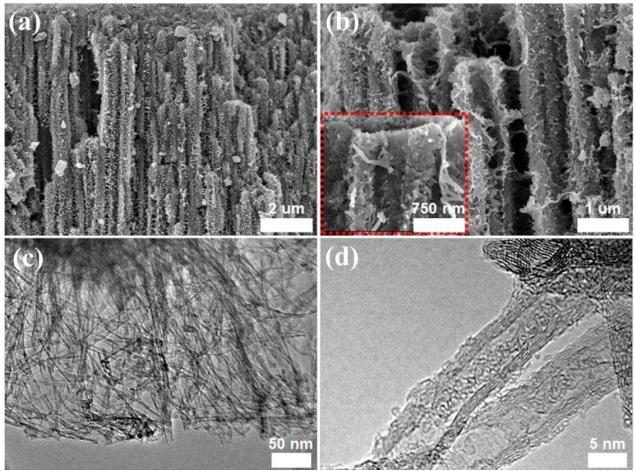 친환경 이산화티타늄의 확대 이미지. (a) 3차원 구조의 친환경이산화티타늄 나노튜브가 일정하고 빽빽하게 수 마이크로미터 크기로 정렬되 있다, (b) 나노튜브를 확대한 모습. 거친 표면과 많은 빈 공간이 넓은 표면적을 가지게 한다, (c, d) 나노미터 단위로 확대한 촉매의 모습. 일정한 크기로 균일하게 이루어져 있다는 것을 확인할 수 있다. - 기초과학지원연구원 제공
