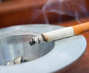 남성 Y염색체 없애는 건 오직 담배 뿐