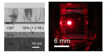 연구팀이 개발한 적색 양자점 발광소자를 현미경으로 본 모습(왼쪽). 발광 소자는 세계 최고 밝기를 나타냈다(오른쪽). - KIST 제공