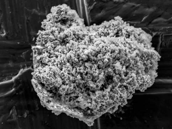 남극의 우주먼지 - AAAS 제공