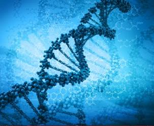 발달장애 유발 유전자 12개 새로 발견