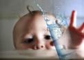 타는 목마름으로…갈증 조절하는 뇌세포 발견