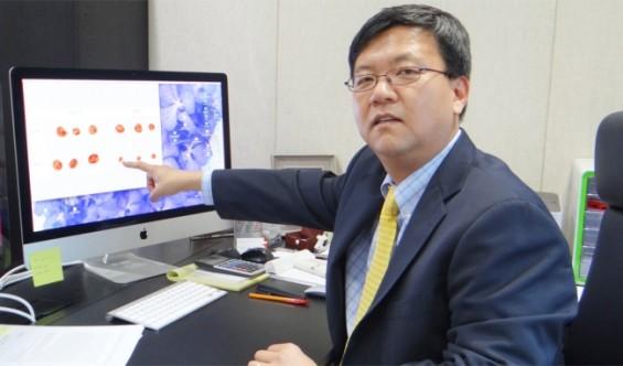 DNA 복구 과정 밝혀 암과 노화 수수께끼 푼다