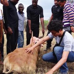 탄자니아 국립공원 야생동물연구센터에 가다