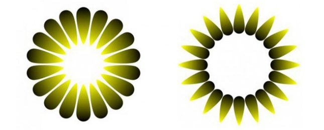 아사이(Asahi) 착시. 왼쪽 도형이 오른쪽 도형보다 가운데 부분이 훨씬 밝아보인다. - sciencemag.org 제공