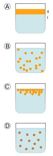 2_물과 기름은 섞이지 않는다(A). 그런데 막대로 세게 저어주면 기름이 작은 방울로 분산되면서 물과 섞여 뿌연 액체가 된다(B). 유화제가 없을 경우는 기름방울이 뭉치면서 바로 원래 상태로 돌아가지만(C), 유화제가 기름방울 표면을 덮고 있을 경우 이 상태가 오래 유지될 수 있다. 많은 가공식품에 유화제가 들어있는 이유다.  - 위키피디아 제공