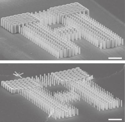반응물질의 농도 변화에 따라 나노 막대의 길이를 다르게 제작할 수 있다. - 한양대 제공