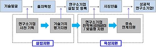 연구소기업 설립 과정을 나타낸 모식도.  - 미래창조과학부 제공