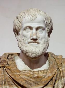 흔히 아리스토텔레스의 '자연은 진공을 싫어한다'를 자연에서 진공이 생기면 다른 공기가 재빨리 채우기 때문에 세운 이론이라고 생각하곤 한다. 그러나 사실 논리적으로 진공이라는 개념 자체에 논란의 여지가 많기 때문에 부정한 것이다. 고대 그리스의 과학은 철학과 구분할 수 없었고, 아리스토텔레스 자신이 논리학의 저자라는 사실을 기억해야 한다. - Ludovisi Collection 제공