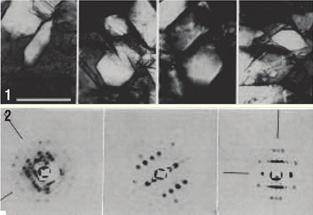 1. 1968년 김 교수가 처음 만든 tRNA결정 사진. 2. 여기서 얻은 X선 화절 사진. 결정의 질이 좋지 않아 구조를 해석해내지는 못했다. - 과학동아 제공