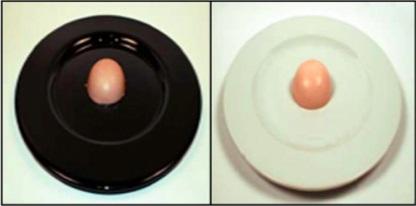 3_똑 같은 딸기 셔벗 디저트도 어떤 접시에 담기냐에 따라 풍미에 차이가 느껴진다. 둥글고 흰 접시일 경우 더 달고 풍미도 풍부하다고 평가한다.  - Food Qual. Prefer. 제공