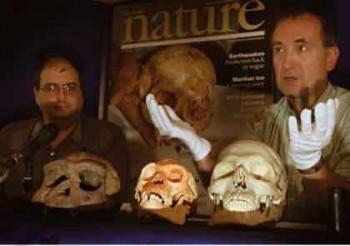 김정훈플로레스인이 발견된 다음해(2004년), 네이처 기자인 헨리 지 박사(왼쪽)와 영국 런던자연사박물관의 크리스 스트링거 박사가 플로레스인에 대한 연구 결과를 발표하고 있다 - 위키미디어 제공
