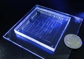 연구팀이 개발한 작은와포자충 진단장치는 그 크기가 2~3cm로 500원 동전보다 살짝 큰 정도다. - 푸단대 제공