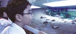 이민재 명예기자가 개미의 행동을 관찰하고 있다. - 어린이과학동아 제공