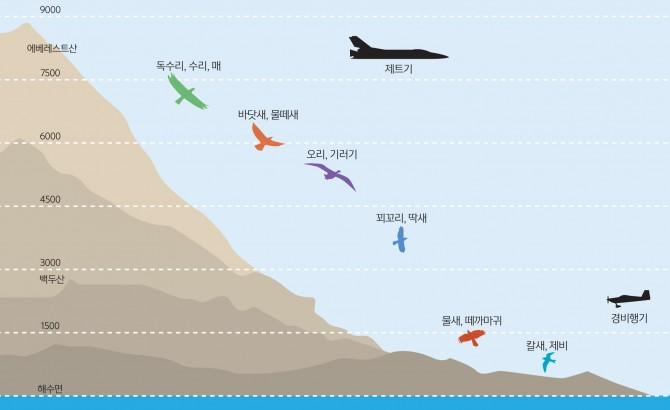 철새 이동 고도(철새는 에너지를 효율적으로 쓰기 위해 최적의 고도를 선택한다. 속도가 빠르고 몸집이 큰 새는 순풍을 탈 수 있는 높은 고도를 선호한다.) - 과학동아 제공
