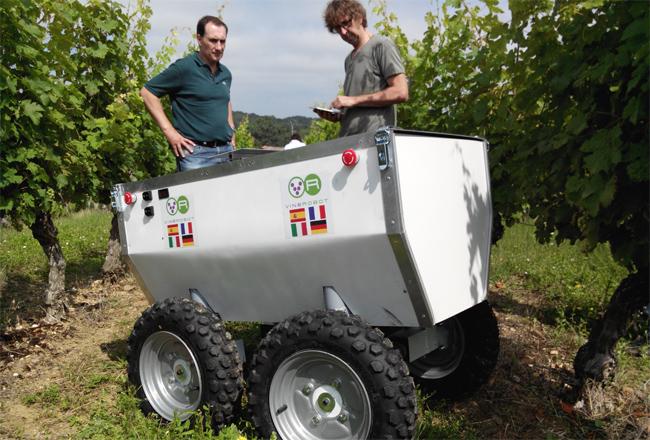 포도밭 농부를 대신하는 '포도 로봇' - phys.org 제공