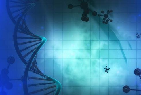 줄기세포 치료제에서 암세포 만드는 '그놈' 찾아냈다