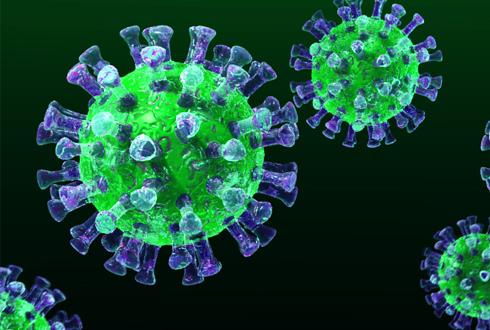 국내 첫 중동호흡기증후군(MERS·메르스) 감염 환자 발생