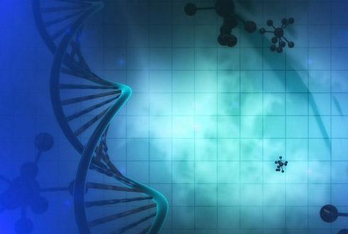 초정밀 유전자 가위 '크리스퍼 논란'