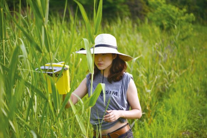 연구원이 렉코를 이용해 수원청개구리를 추적하고 있다 - 장이권 교수 제공