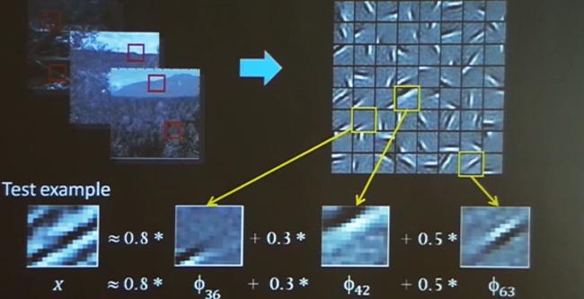 구글과 앤드류 응 박사는 이 그림처럼 이미지를 패턴화해 사물을 인지하는 방식으로 유튜브에서 고양이를 찾아내는 데 성공했다. - 미국 스탠퍼드대 제공