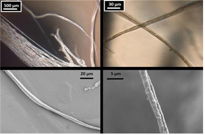 국내 연구진이 MIT 연구진 등 미국 3개 대학 연구팀과 공동으로 개발한 인공 거미줄의 모습 - KAIST 제공