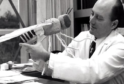 1971년 시모어 벤저 교수의 생체시계 돌연변이 초파리 발견