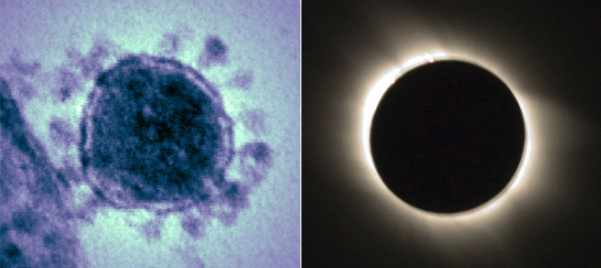 코로나 바이러스(왼쪽)와 개기일식 때의 코로나 - NIH, Ross Berteig(위키미디어) 제공