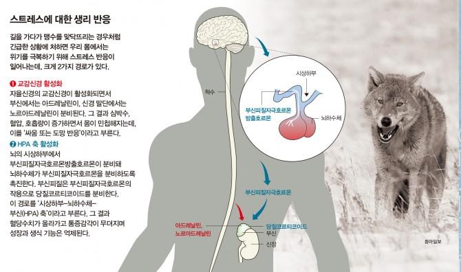 과학동아, 동아일보 제공