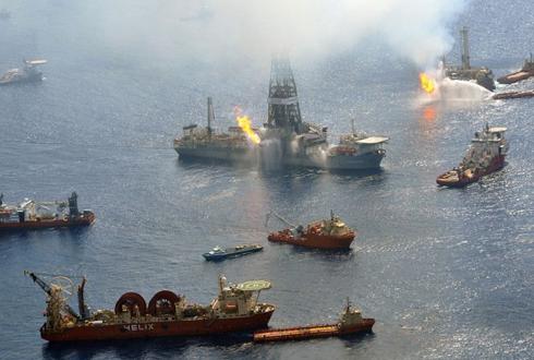 멕시코만 원유 유출 5년, 생태계 살아났나?