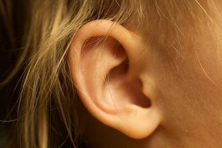 청력장애, 유전자 치료로 고친다