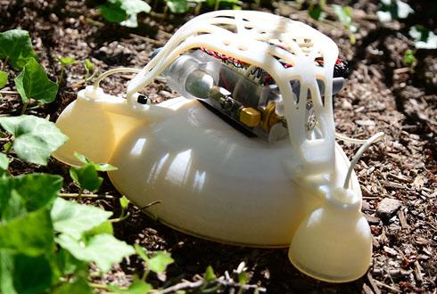 저는 말랑한 '개구리 로봇'입니다