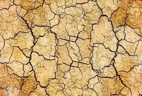 최악의 가뭄, 엘니뇨 때문?!