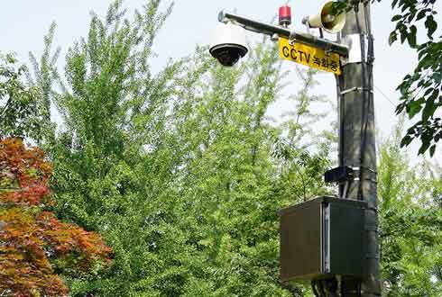 이런 CCTV 보셨나요?
