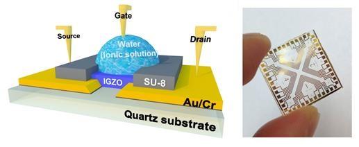 연구팀이 개발한 전자소자의 모식도(왼쪽). 중간의 수용액이 반도체에 꼭 필요한 절연체 역할을 한다. 전자소자의 실제 모습. - GIST 신소재공학부 제공