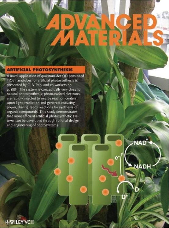 KAIST 박찬범 교수팀의 연구성과가 표지논문. - Advanced Materials 제공