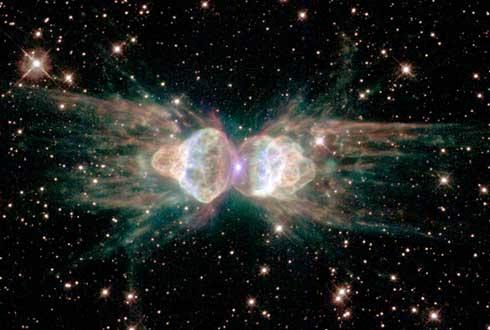 크기 1.6광년 슈퍼개미의 비밀