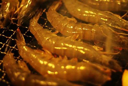 [COOKING의 과학] 황금빛 가을철 영양과 맛의 보고, 대하