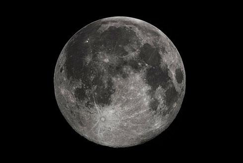 """""""보름달 뜰 때 늑대가 울부짖는다""""… 사실인가요?"""