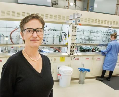 인공광합성공동연구센터, 미국 인공광합성 연구의 최전선을 가다